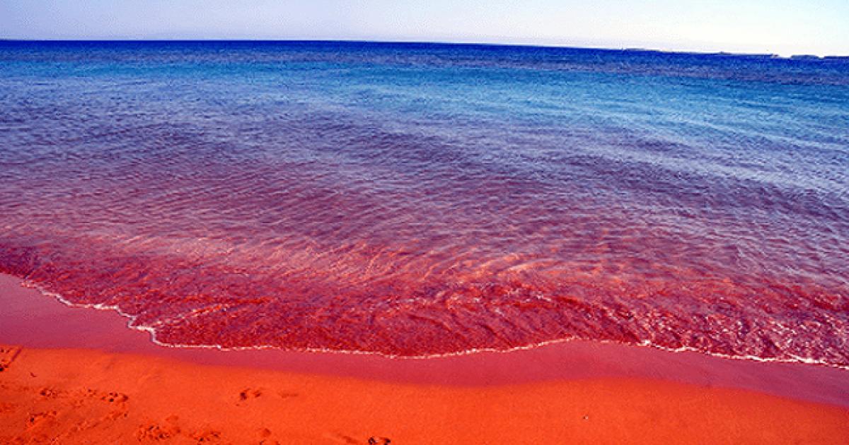 Το μυστικό της κόκκινης παραλίας στην Κεφαλονιά που ομορφαίνει τις γυναίκες χωρίς το παραμικρό κόστος