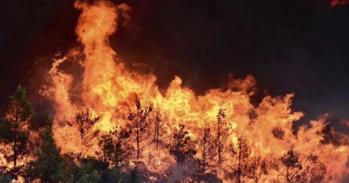Φωτιά Μάτι, ανατροπή: Ποιος έβαλε τελικά φωτιά και σκότωσε 92 ανθρώπους. Απίστευτη τροπή
