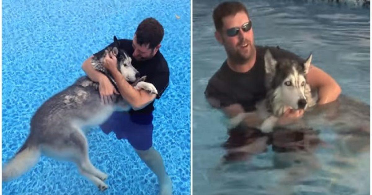 Ιδιοκτήτης έβαλε το γέρικο, άρρωστο σκυλί του στη πισίνα και του έσωσε τη ζωή