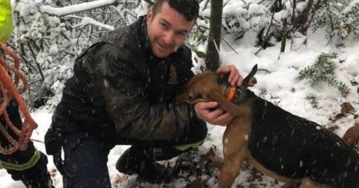 Πυροσβέστες έσωσαν σκύλο που έπεσε σε πηγάδι βάθους 30 μέτρων κοντά την Ολυμπιάδα Χαλκιδικής