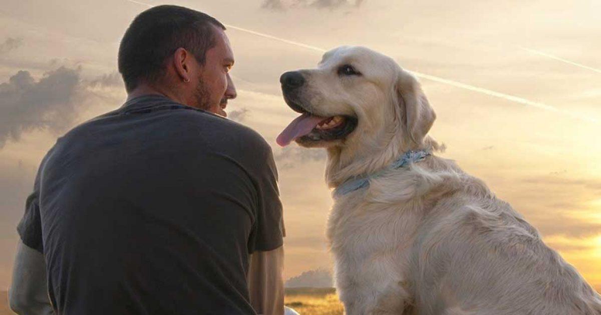 """""""Σκύλος: ο φίλος της καρδιάς"""""""
