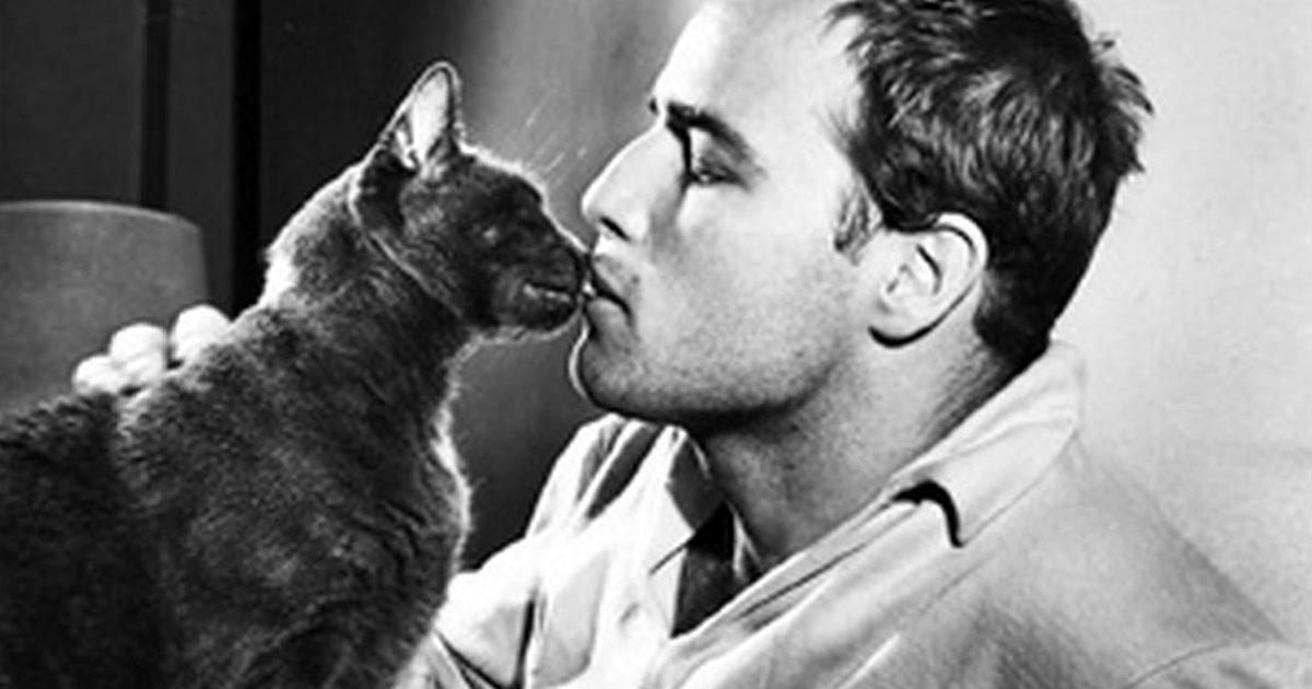 Σίγκμουντ Φρόυντ: Ο χρόνος που περνάς με τις γάτες δεν πάει ποτέ χαμένος