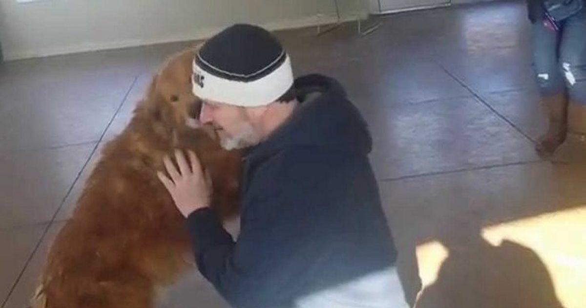 20 μήνες πριν έχασαν τον σκύλο τους. Δείτε τη στιγμή που τους τον φέρνουν πίσω