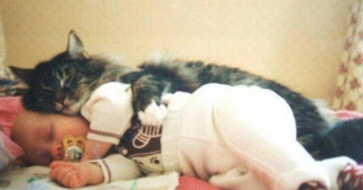 25+1 αξιολάτρευτες φωτογραφίες μωρών αγκαλιά με τις γατούλες τους.