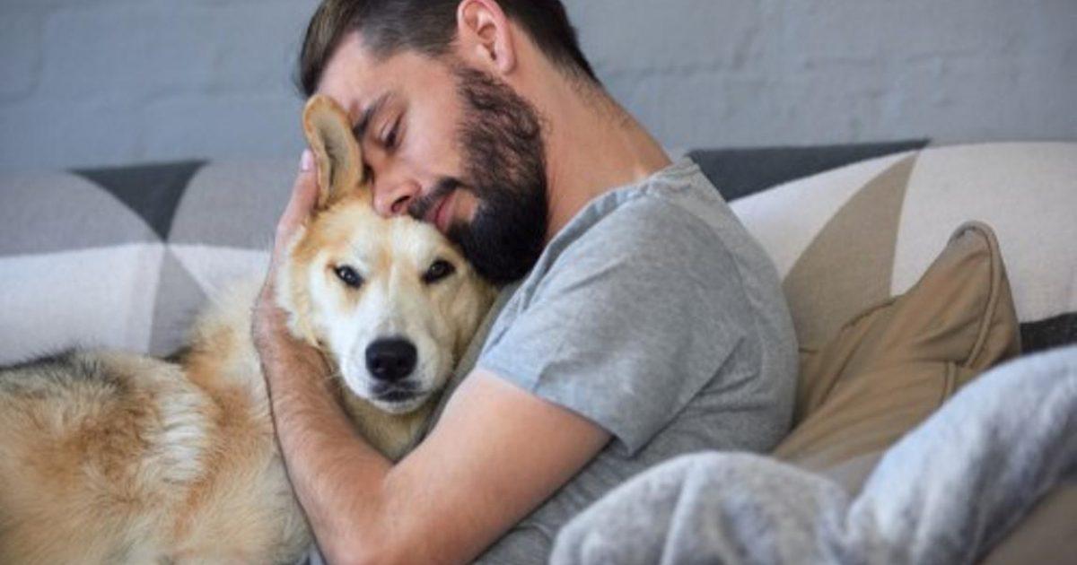5 τρόποι για να πείτε στον σκύλο σας «Σ'αγαπώ» στη γλώσσα του