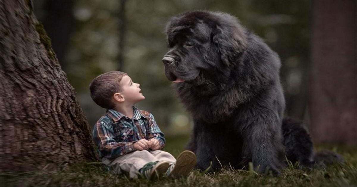 Η δυνατή φιλία μεταξύ παιδιών και σκυλιών μέσα από 10 φωτογραφίες που σε πλημμυρίζουν συναισθήματα