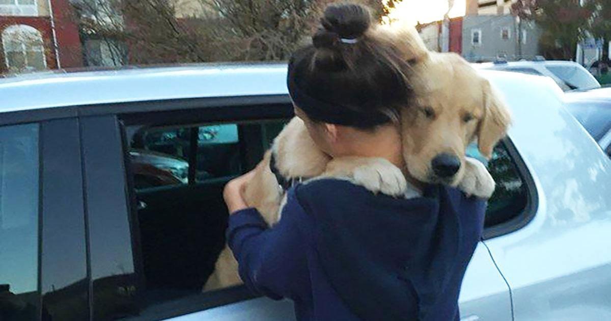 13 τρυφερές φωτογραφίες με σκύλους που αγκαλιάζουν τους ιδιοκτήτες τους και θα σας λιώσουν την καρδιά